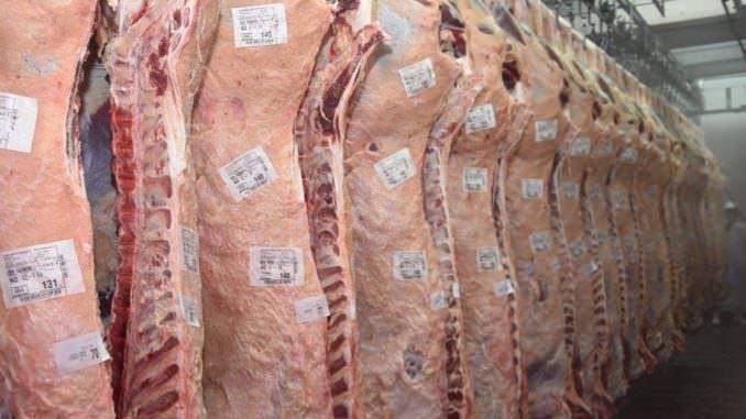 Etiquetas para contacto directo con carne